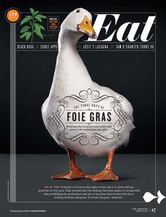Please don't eat foie gras....it's cruelly prepared. Photo: Jill Greenberg
