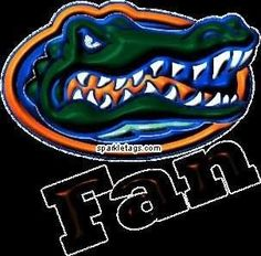 UF Gators Uf Gator, Florida Gators Football, College Football, Florida Athletics, Florida Gator Memes, Football Fever, Tim Tebow, Florida Girl, University Of Florida