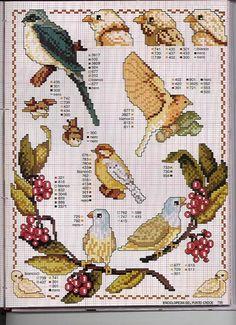 bird a month cross stitch free Cross Stitch Pictures, Cross Stitch Love, Cross Stitch Cards, Cross Stitch Animals, Cross Stitching, Embroidered Bird, Bird Embroidery, Cross Stitch Embroidery, Cross Stitch Patterns
