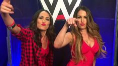 The Bella Twins reunite next year? They will if Nikki has anything to say about it!