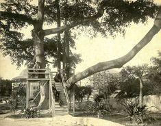 O. Pierre Havens - Summer House, Nassau, Bahamas | Item: Tit… | Flickr
