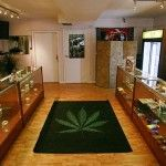 N.H. Becomes 19th State to Legalize Medical Marijuana