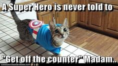 "A Super Hero is never told to ""Get off the counter"" Madam.."