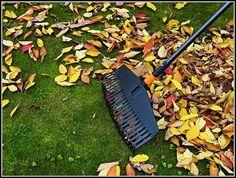 Široké hrábě Fiskars 135013 jsou vhodné na účinné hrabání spadlého listí a posekané trávy. 25 pružných prstů z vysoce kvalitního plastu má pracovní šířku 52 cm. Zamykací mechanismus Fiskars QuikFit™ umožňuje jedním rychlým pohybem měnit nástavce.