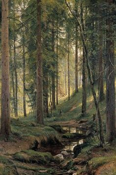 This beautiful photo reminds us that a forest filled with trees is a wondeful place to meditate. Stream by a forest slope - Ivan Shishkin - Canvas Artwork Beautiful Forest, Beautiful World, Beautiful Places, Beautiful Photos Of Nature, Beautiful Nature Photography, Trees Beautiful, Beautiful Landscape Photography, Beautiful Scenery Pictures, Romantic Nature