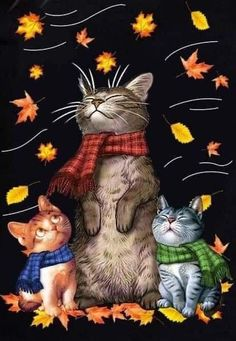 Animals And Pets, Cute Animals, Image Chat, Cat Drawing, Crazy Cats, Cat Art, Cool Cats, Animal Drawings, Cats And Kittens