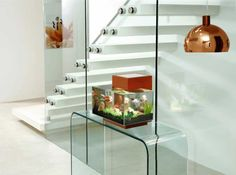 Modern design: nano aquariums - Fluval