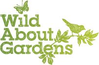 See how RHS can give expert advice on growing, feeding, pruning and propagating plants. Find specific plants with our Plant Finder & Plant Selector. Pruning Hydrangeas, Wisteria Pruning, Planting Shrubs, Container Gardening, Gardening Tips, Chamomile Lawn, Shade Tolerant Plants, Laurus Nobilis, Growing Raspberries