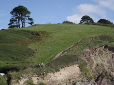 THE SOUTH WEST FOOT PATH LOOE SIDE OF TALLAND BAY,Cornwall