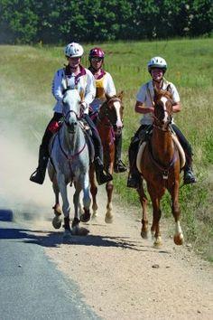 Myths concerning feeding fat to endurance horses - by Kentucky Performance Products, LLC  #horses
