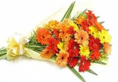 If you're looking to send truly dazzling flowers to Hyderabad, we at Hyderabad Florist have everything you need. Explore our wide range of exceptional and carefully chosen floral arrangements for all occasions, be it Birthday Flowers Hyderabad, Anniversary Flowers Hyderabad, Valentine Day Flowers Hyderabad, Christmas Flowers Hyderabad or Raksha Bandhan Flowers in Hyderabad.