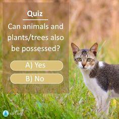 Trees To Plant, Spirituality, Canning, Reading, Plants, Animals, Animais, Animales, Animaux