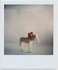 #polaroïd. Very cute. (((:
