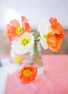 Orange and white poppies