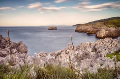 Coast in the spring  #Cantabria #Spain