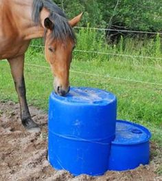homemade horse portable mounting block