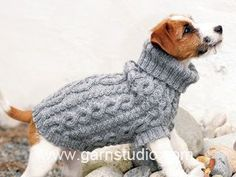 Items similar to Knit sweater dog Cable sweater Norwegian sweater Dog sweater Sweater for dog Dog clothes Dog clothing Small dogs Fair isle sweater on Etsy Knitted Dog Sweater Pattern, Knit Dog Sweater, Sweater Knitting Patterns, Free Knitting, Jumper Patterns, Small Dog Clothes Patterns, Large Dog Sweaters, Dog Jumpers, Grey Dog