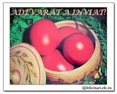 Adevarat a inviat! Easter Eggs, Christian, Paste, Beauty, Flowers, Beleza, Christians, Cosmetology