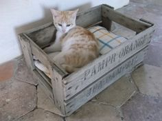 French Crate Cat Bed