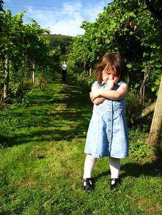 """Enoturismo infantil, cata de """"vino"""" para niños"""