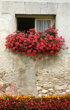 Window Box, Chateau d'Etoges, Champagne, France | Flickr - Photo Sharing!