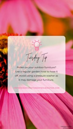 TUESDAY TIP: Pollen 🌺 Use a regular garden hose to rinse off pollen that has settled on your outdoor furniture. Avoid using a pressure washer on your furniture; it can damage the piece and/or the finish. Use mild soap and water to get out pollen or dirt on outdoor cushions. Like and follow for more tips! #TuesdayTip #Furniture #Wood #DIY #UnfinishedFurnitureofWilmington Unfinished Furniture, Outdoor Cushions, Mild Soap, Garden Hose, Washer, Tuesday, Web Design, Outdoor Furniture, Wood
