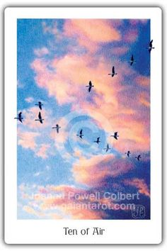 "Gaian Tarot Ten of Air (swords)  Joanna Powell Colbert says ""Canada geese fly in a V-formation during the fall migration. We can almost hear the chorus of honking. The familiar sight of geese flying south for the winter never fails to tug at our hearts, bringing a sense of impermanence and longing. In European tales of the Wild Hunt, it was said that flocks of wild geese or swans embodied the souls of the dead who flew through the winter night sky."""