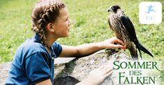 Sommer des Falken – Familienfilm bei Kixi – Kinderkino