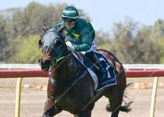 Gallery - Trackside Photography