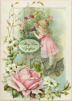 Flower box girl Pink roses  format digital by CottageRoseGraphics