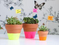 Você também adora comprar plantinhas mas sofre com aqueles vasinhos de plástico sem graça? Demos 15 sugestões de pinturas fáceis pra mudar a cara deles!