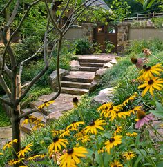 Front Entry Pathway With Steps Traditional Lighting Design Ideas, Pictures, Remodel and Decor