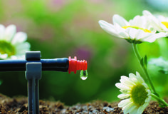 The drip irrigation market in Europe is expected to gain significant traction over the forecast period, owing to reduction in arable land, water scarcity due to industrialization, and increasing population in Europe. Best Sprinkler, Sprinkler Repair, Lawn Sprinkler System, Greenhouse Construction, Water Scarcity, Drip Irrigation System, Lawn Sprinklers, Water Conservation, Light Installation