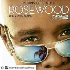 #RosewoodFox
