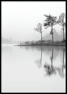 Sort-hvid plakat med fotokunst af natur.