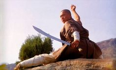 Shaolin Kung Fu http://www.houstonshaolin.com/images/photo_10.jpg