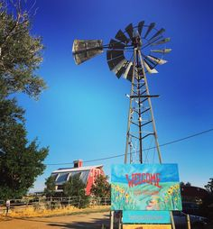 Myhusband and I went to Berry Patch farms in Brighton, Colorado to…