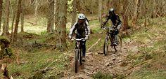 Noquemanon Trail Network / Marquette, MI Bike Reviews, Upper Peninsula, Cross Country Skiing, Mind Body Soul, Michigan, Trail, World, Biking, Highlights