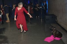 Carrie Fisher plays with her dog Gary during Star Wars premiere Debbie Reynolds Carrie Fisher, Carrie Frances Fisher, Gary Fisher, Leia Star Wars, Star Wars Love, My First Crush, Princess Leia, Role Models, Amazing Women