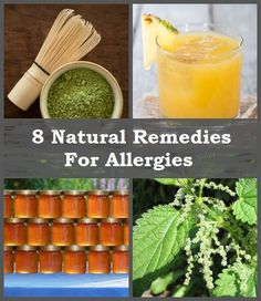 8 Natural Remedies For Allergies