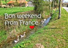 Newsletter from France, April's here! : The Good Life France