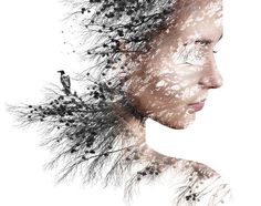 Find Double Exposure Portrait Young Woman Pine stock images and royalty free photos in HD. Explore millions of stock photos, images, illustrations, and vectors in the Shutterstock creative collection. of new pictures added daily. Multiple Exposure, Double Exposure, Photography Competitions, Royalty Free Photos, Female Art, How To Introduce Yourself, Lonely, Modern Art, How To Look Better