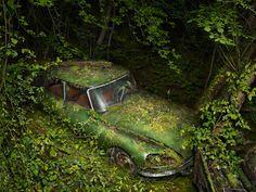 paradise parking by Peter Lippmann photographer