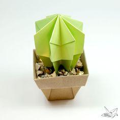 Origami Cactus Tutorial #origami #cacti #cactus #origamicactus #pot #origamipot #origamibox #diy #kawaii #cute #paper #papercraft #paperkawaii #paperfolding