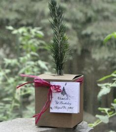Birthday Party Favors - Plant a Tree