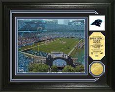 Carolina Panthers Single Coin Stadium Photo Mint