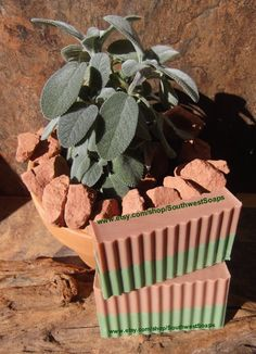 Sage and Cedarwood Soap Sage Soap Cedarwood by SouthwestSoaps