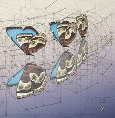 Galería de Rafael Araujo fusiona el arte y la ciencia ilustrando a mano la Proporción Áurea - 6