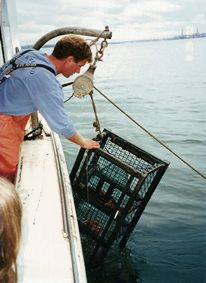 Lucky Catch Lobster cruise.  Great outing and fun for all members of a family.