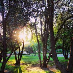 Parque Araucano en Las Condes, Metropolitana de Santiago de Chile